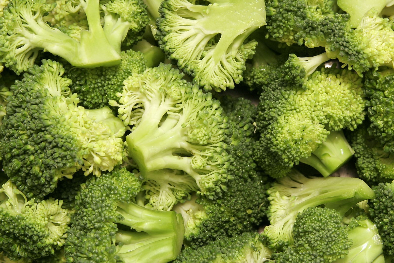 Broccoli_bunches