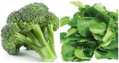 Broccoli and Watercress Can Kill Cancer Cells Within a Day
