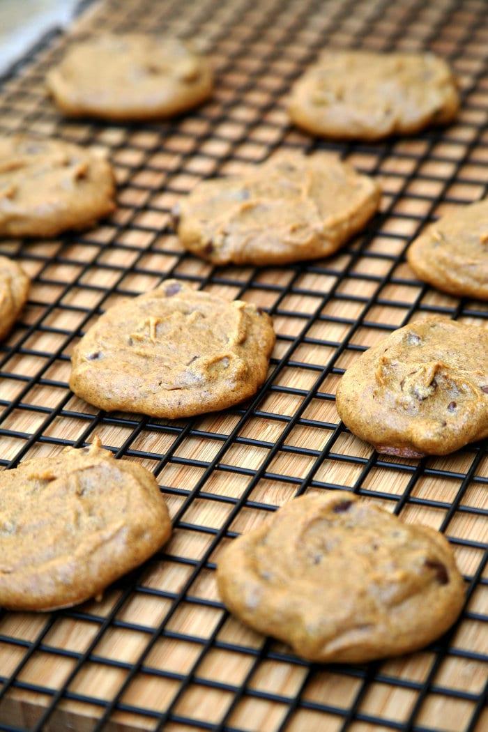 Pumpkin Chocolate Chip Cookies (Recipe)