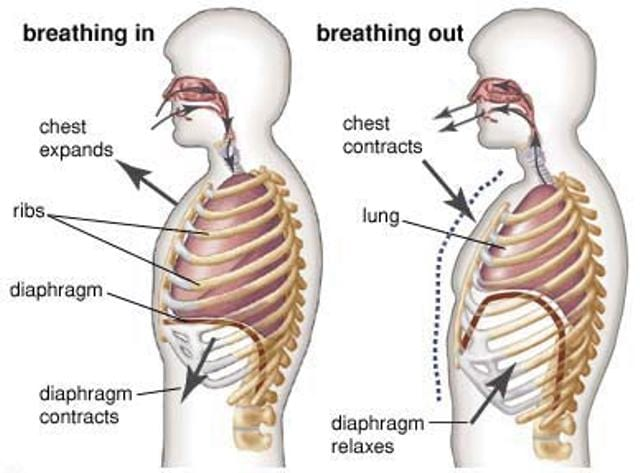 These 2 Simple Breathing Exercises Will Help You Quit Smoking