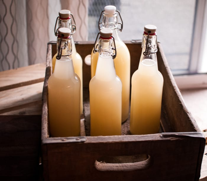 MAKE GINGER BEER AT HOME: IT CAN TREAT ARTHRITIS, STOMACH ACHES, REDUCE CHOLESTEROL AND BLOOD SUGAR LEVELS