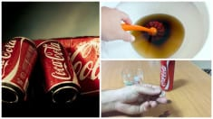 5 Proven Reasons Why Coca Cola is Not For Human Consumption