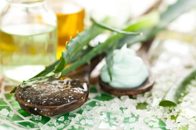 Aloe Vera Dan Minyak Kelapa Campuran - Manfaat Amazing!