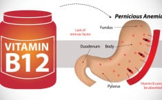 No One is Thinking About Vitamin B12 – The Most Important Nutrient