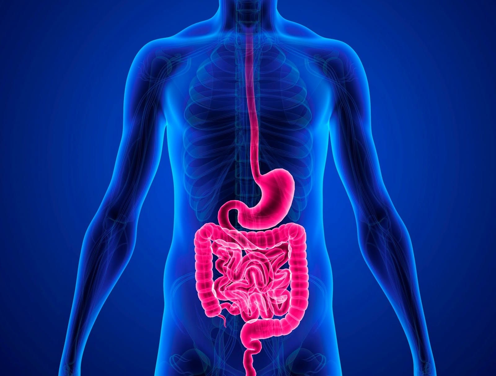 90% of All Diseases Begin in the Colon! Here's What You Can Do To Avoid Them and Protect Your Body!