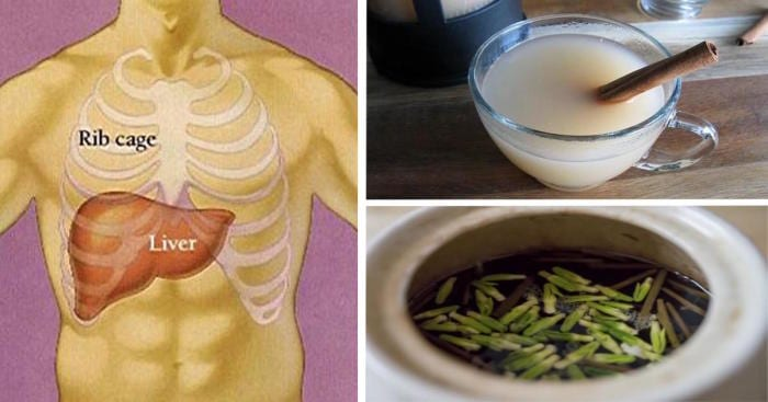 The 8 Most Effective Nighttime Drinks For Quick Liver Detoxing and Fat Burning