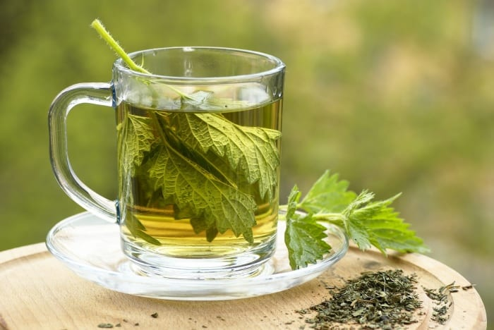 Nettle Tea – Excellent Remedy For Blood Cleansing