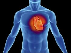 30% of Deaths From Heart Disease Could be Prevented if Everyone did These 6 Things