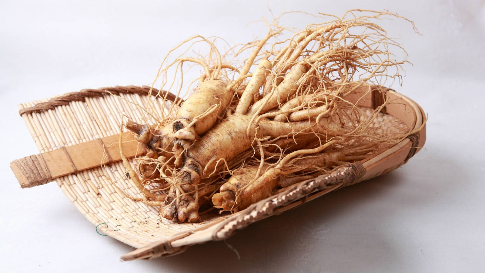 Properties of Ginseng