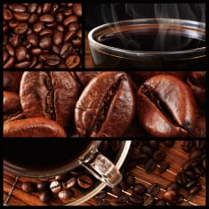 Light Roast vs. Dark Roast Coffee: Which Packs More Health Perks?