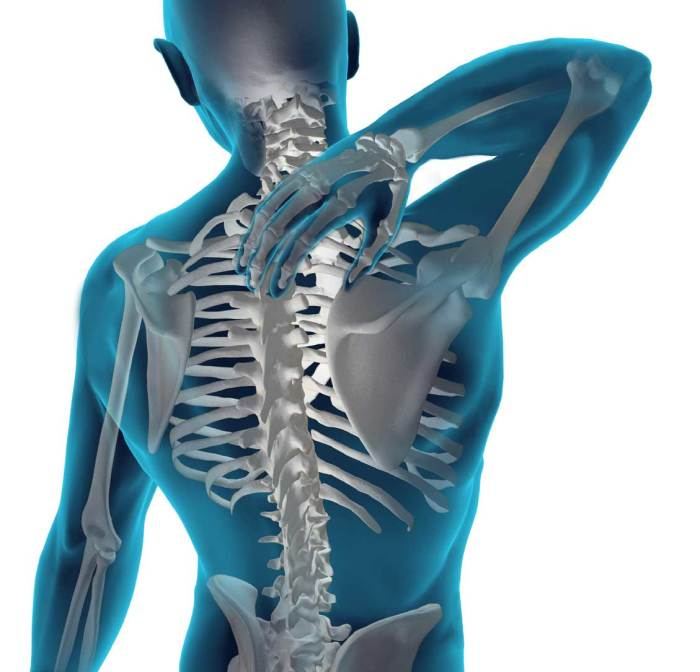 This Simple Exercise Will Cut in Half Your Back and Spine Injury Risk and Protect Against Lower  ...