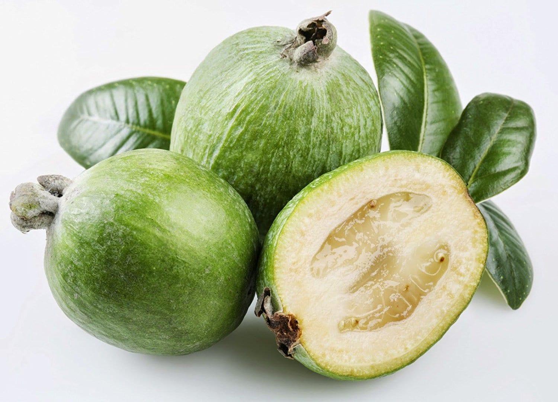 Feijoa Healthy Fruit