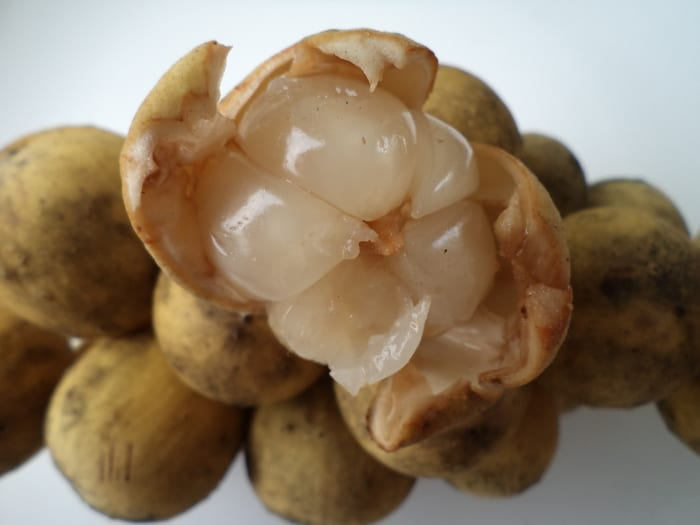 What Are The Great 10 Health Benefits Of Lanzones – The Exotic Fruit for An Exotic Summer Days