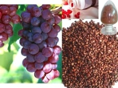 Grape Seed More Efficient Than Chemotherapy