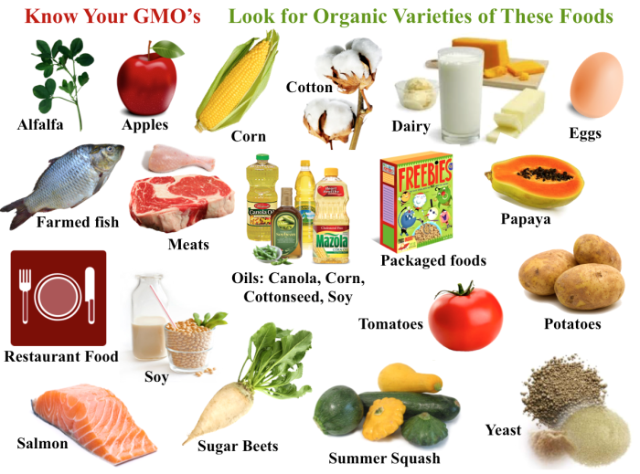 how to tell if food is genetically modified