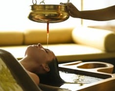 MASSAGE THE SCALP WITH THIS AYURVEDIC OIL AND YOU WILL NEVER LOSE A SINGLE HAIR AGAIN