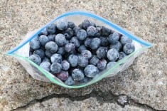 How to Flash Freeze Blueberries to Preserve Their Cancer-Fighting Power