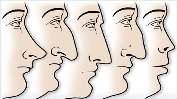 The Shape Of Your Nose Tells A Ton About Your Personality! (See Details Inside)