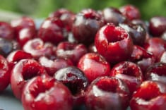 MAGICAL RECIPE WITH SOUR CHERRIES: IT TREATS IMPOTENCE AND HEPATITIS A, MELTS THE POUNDS AND GIV ...