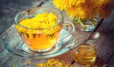 Dandelion Treats Cancer, Hepatitis, Liver Diseases, Kidneys, Stomach… Here's How To Prepare