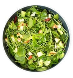 MEDICINAL USES AND CURATIVE APPLICATIONS OF WATERCRESS