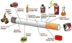 What Is In A Cigarette? Chemicals and Ingredient List Confirm How Dangerous Smoking Really Is