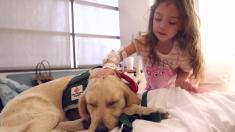 How Therapy Dogs Help Kids With Cancer