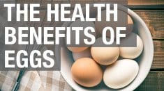Eggs – health benefits and nutrition facts