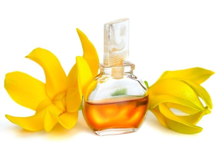 Ylang ylang essential oil – aphrodisiac & antiseptic property