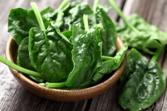 Know the Science-Backed Benefits of Spinach