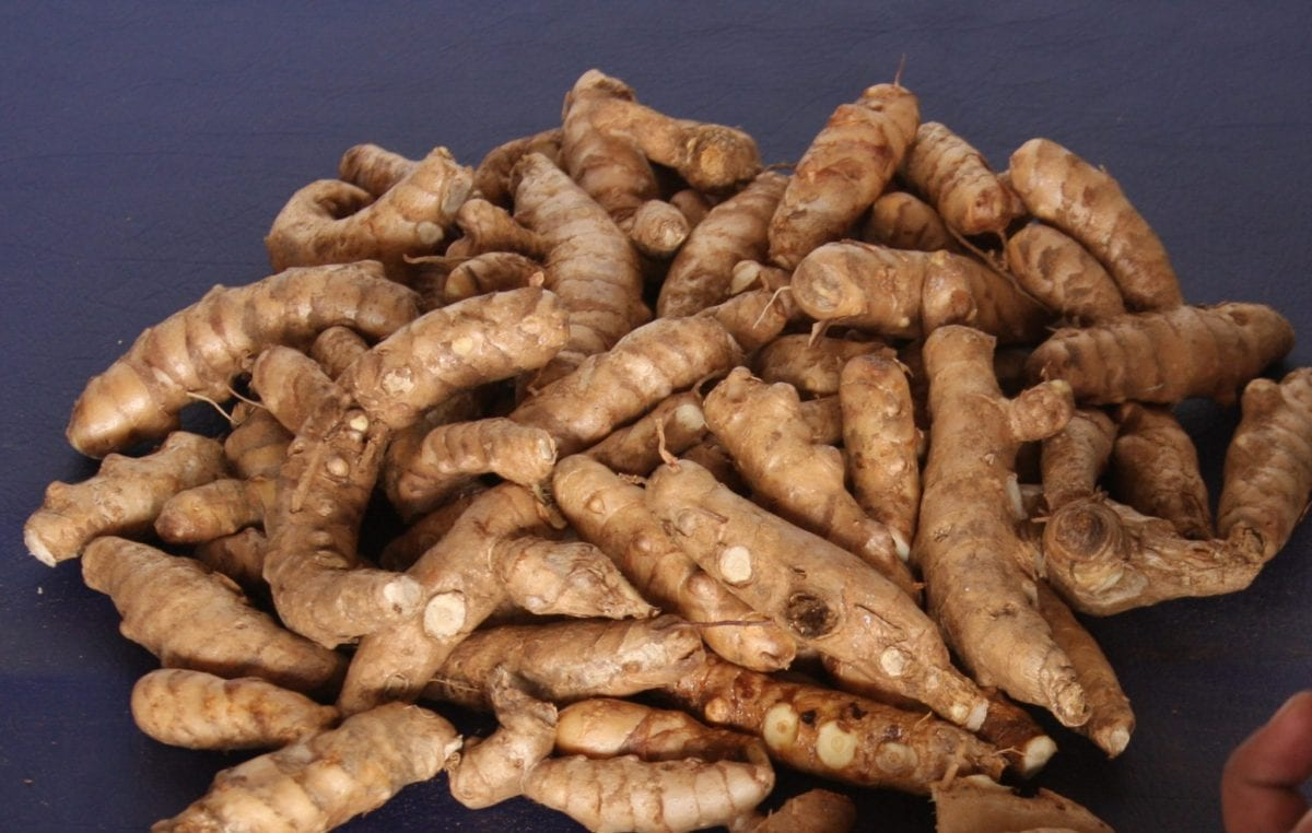 Beneficial features for Health of Arrowroot