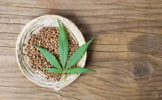 Hemp seeds health benefits