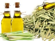 Lemongrass essential oil for acne, dandruff and deodorant