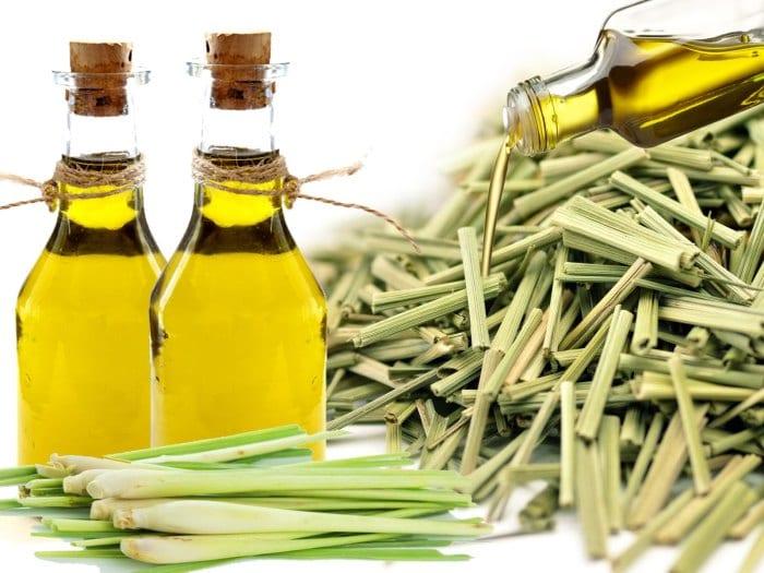 Lemongrass essential oil for acne, dandruff and deodorant