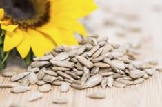 Sunflower seeds improve digestion and brain health