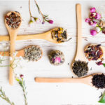 The most beneficial herbs for health