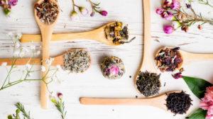 Most Healthy Medicinal Herbs